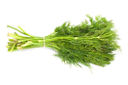 potherb: Bunch of ripe green dill isolated on white  Stock Photo