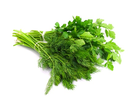 potherb: dill parsley to spices bunch isolated on white background