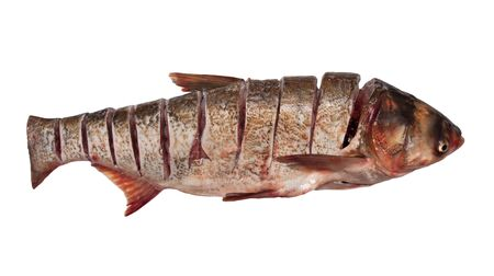 carp of cuts on a white background photo