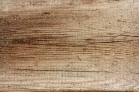 shavings: Wooden texture - can be used as a background