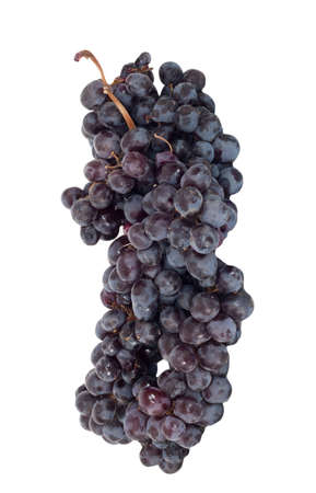 Black grapes cluster  photo