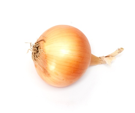 fresh onions on a white background photo