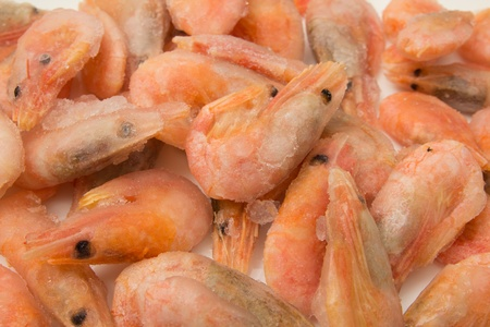close up of frozen shrimps  photo