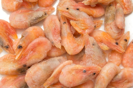 close up of frozen shrimps  photo