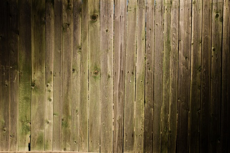 Wooden background Stock Photo - 14055416