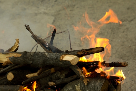 fervour: Fire, burning branches of a tree on a barbecue
