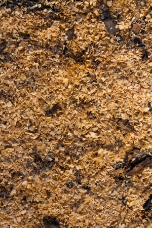 sawdust as a background photo