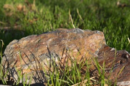 stone in the grass on the nature Stock Photo - 14424476