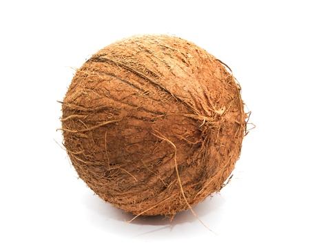 coconut on white background photo