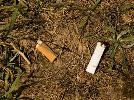 cigarette on the ground Stock Photo - 14928046