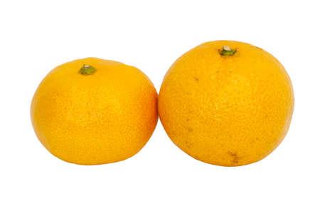 tangerine on white background Stock Photo - 14929446