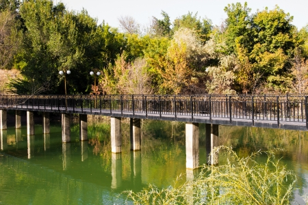 bridge over the lake in the arboretum. Shymkent Stock Photo - 15722140
