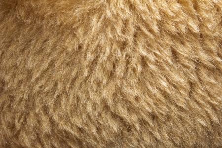 background of fur. macro Stock Photo - 17115077