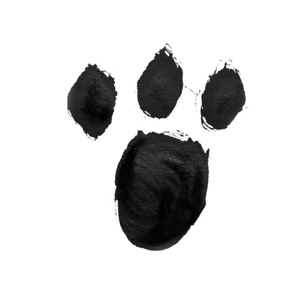 cat paw: signs painted with gouache paint