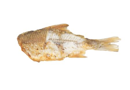fried fish on a white background photo