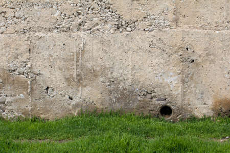 grass near the old concrete wall photo