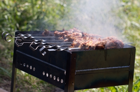 skewers. grilled meat on the coals Stock Photo - 21332122