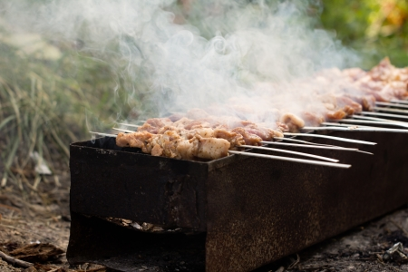 skewers. grilled meat on the coals Stock Photo - 21332201
