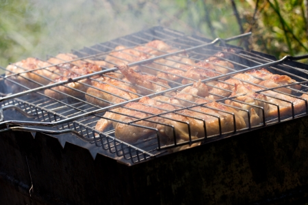 skewers. grilled meat on the coals Stock Photo - 21332204