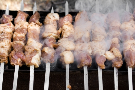 skewers. grilled meat on the coals Stock Photo - 21332211