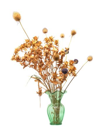 dried flower arrangement: dried flowers in a vase on a white background