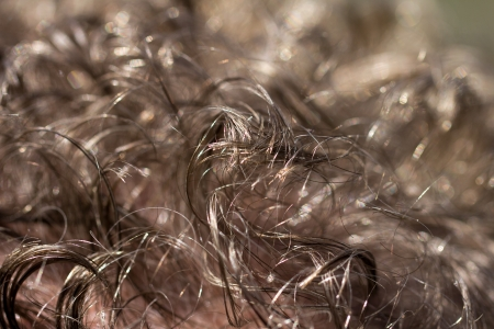 background of the hair. macro photo