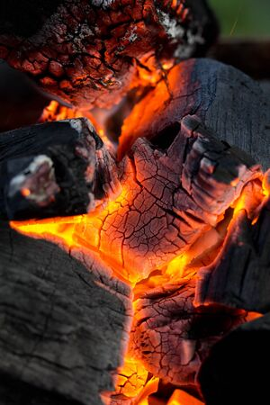 coals as a backdrop. macro photo