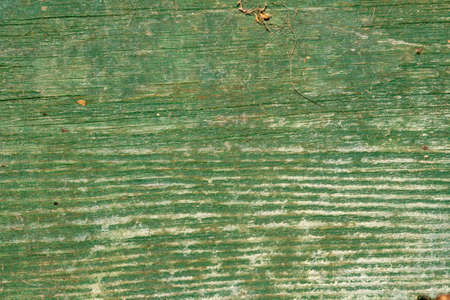 background of an old green wooden pieces photo