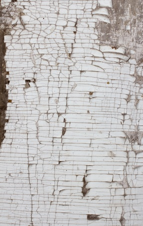 old wooden background with white paint photo