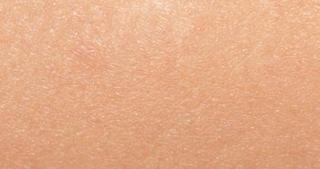 人間の皮膚。マクロ