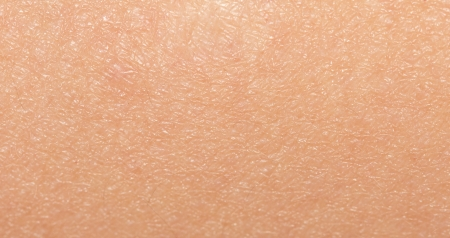the human skin. macro Stock Photo