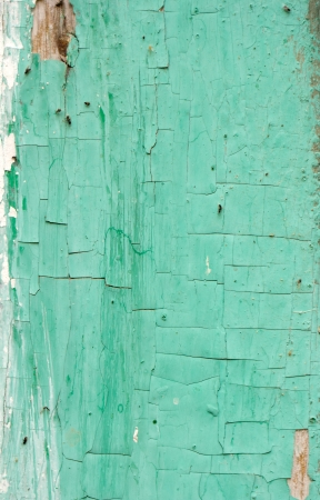 abstract background of old boards painted with green paint photo