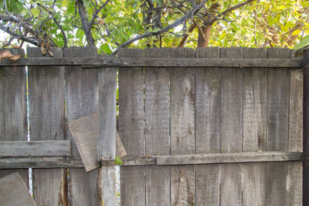 wooden fence in nature as the background photo