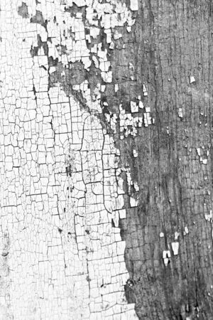 background of old white paint on board Stock Photo - 24304003