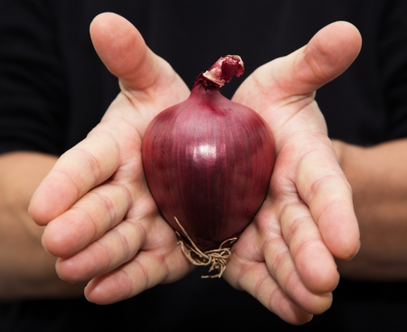 aftertaste: red onions in her hand Stock Photo