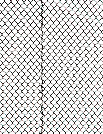 metal grid on a white background photo