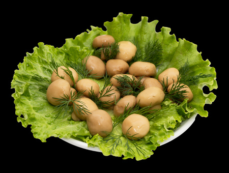 champignon mushrooms in lettuce leaves on a black background photo