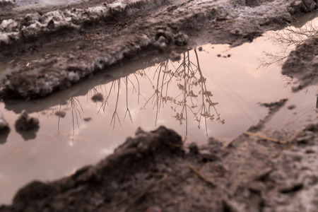mud and snow: puddle on the road in winter