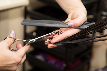 salon hair: Womens haircut scissors at salon Stock Photo