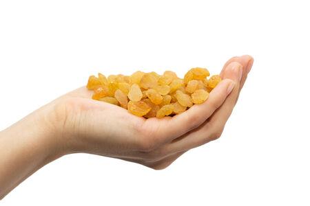 golden raisins in hand on white background photo