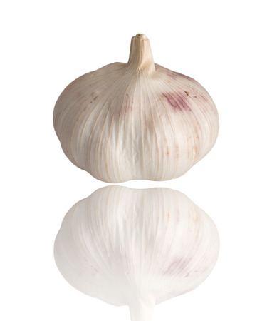 garlic on a white background photo