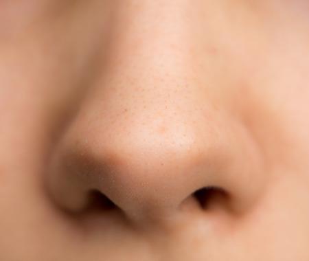 鼻の女の子。マクロ