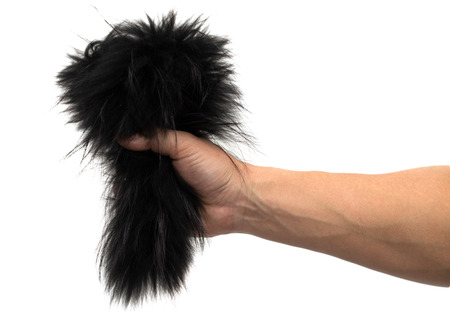 black fur in his hand on a white background photo