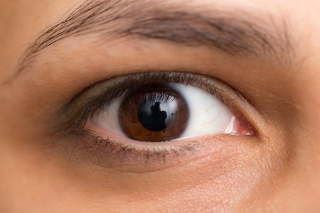 hazel eyes: Ojos casta�os. macro