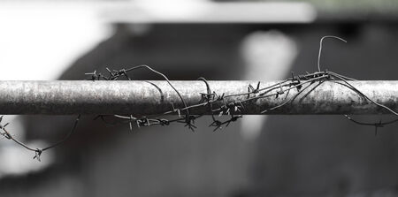 barbed wire on tube photo