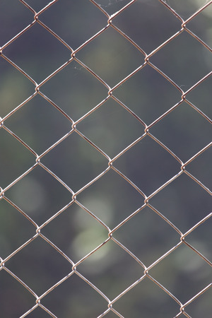 wire mesh fence photo