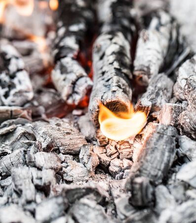 cinders: Campfire with burning firewood on foreground closeup Stock Photo