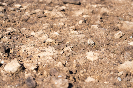vermiculture: dung on the nature