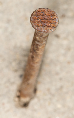 rusty nail: viejo clavo oxidado. primer plano