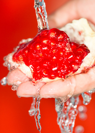 tannins: Ripe red pomegranate in her hand in water Stock Photo